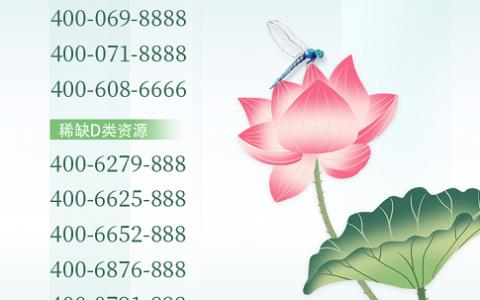 2020年7月6日:今日400电话推荐