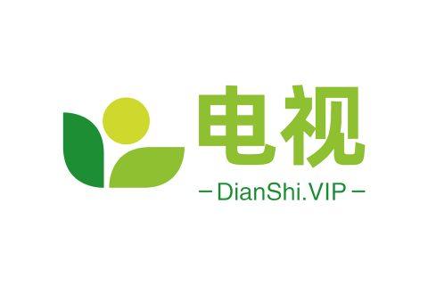 DianShi.VIP